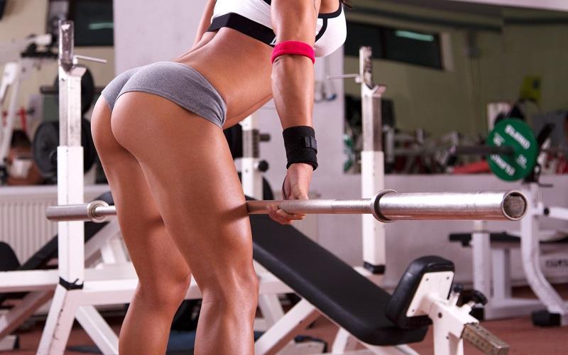 Двуглавая мышца тела относится к мышцам